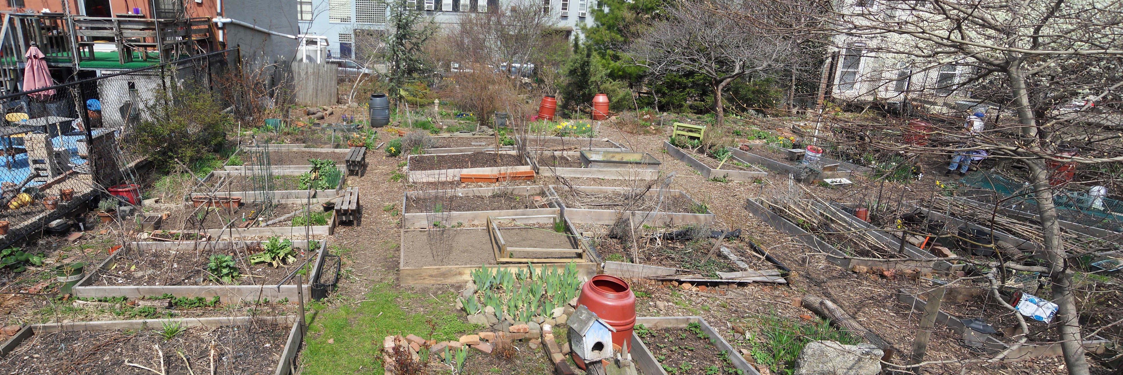 2011 April - Rear of garden