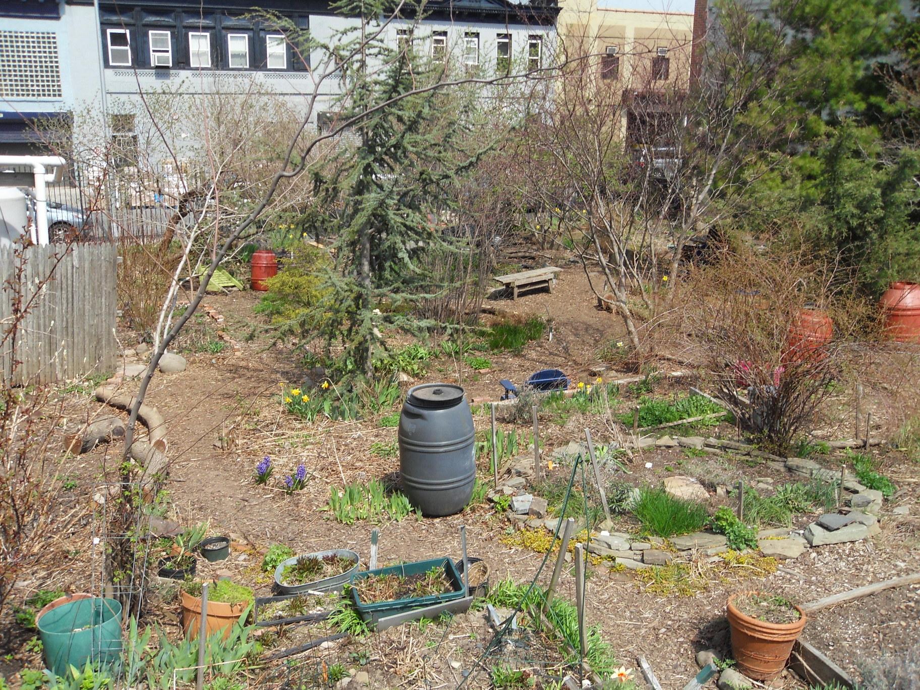 2011 April - Mid garden