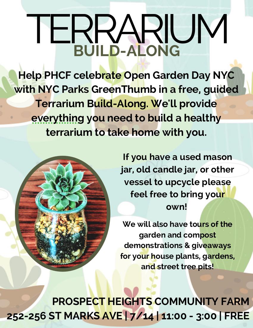 Create Your Own Mini Succulent Garden At The Terrarium Build Along
